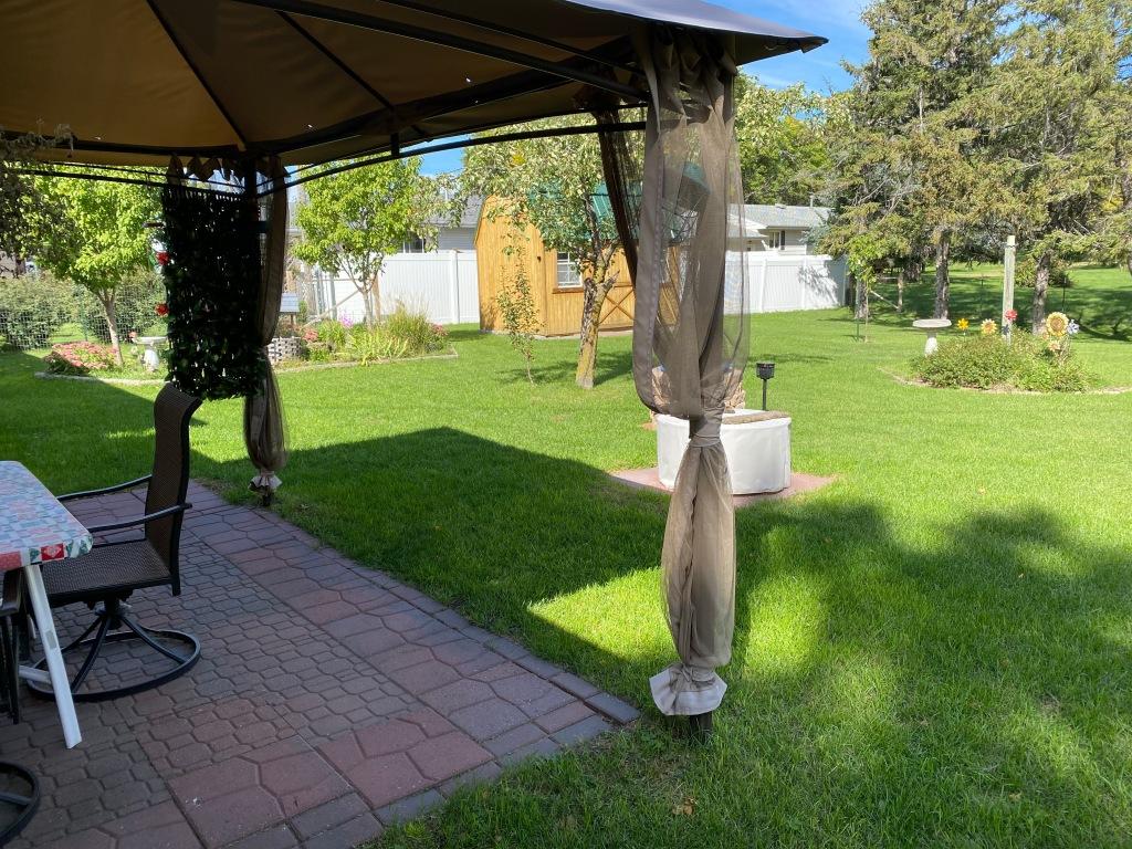 Mike's Backyard